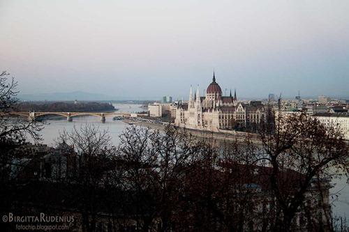 budapest_20111128_parliament