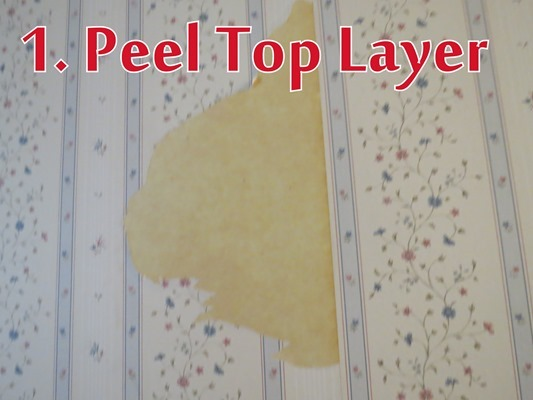 1. Peel Top Layer