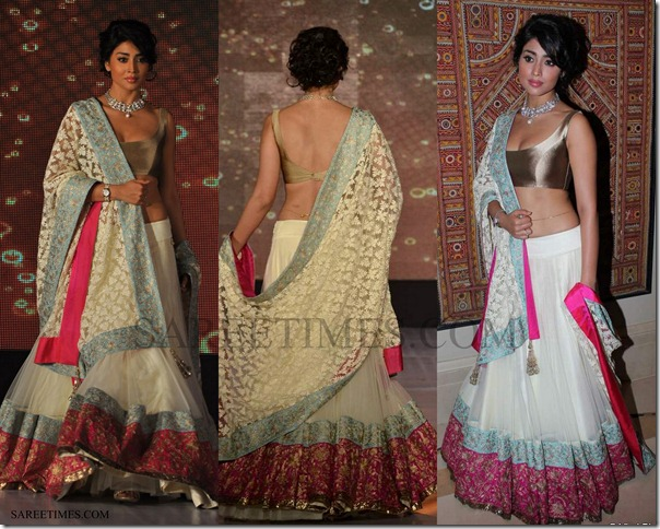 Shriya_Manish_Malhotra_Saree