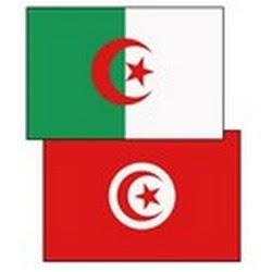 Examen de la coopération algéro-tunisienne dans le domaine énergétique