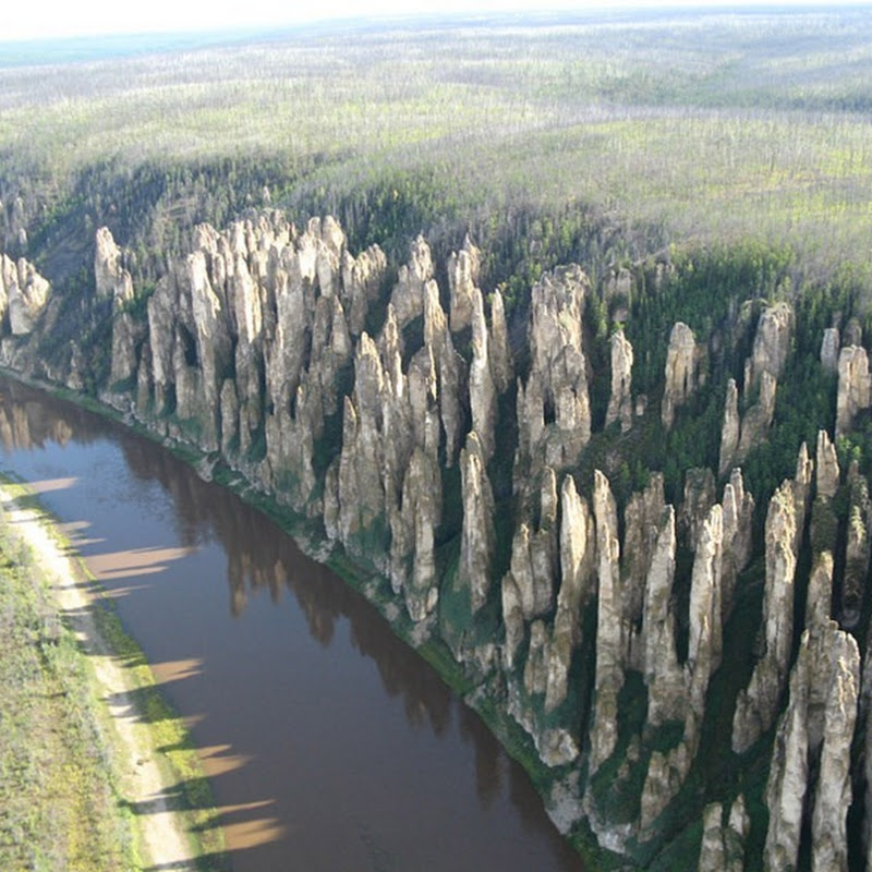 Lena's Stone Forest