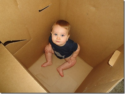 2.  Playing in the big box