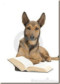 perro biblia ateismo