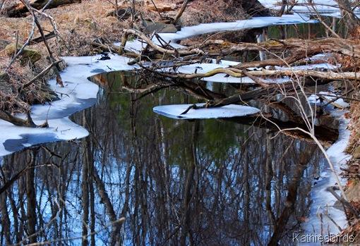 10. ice on the skug-kab