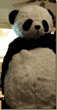 panda rowan-001