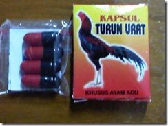 KAPSUL_TURUN_URA_4cd18b24693b1