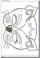 gato mascaras (11)