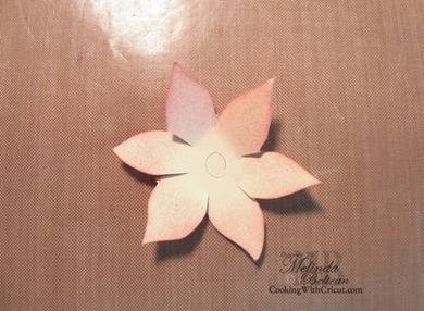 cut flower650