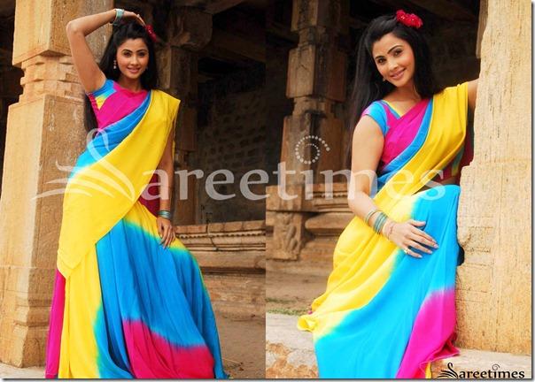 Daisy_Shah_Multicolor_Saree