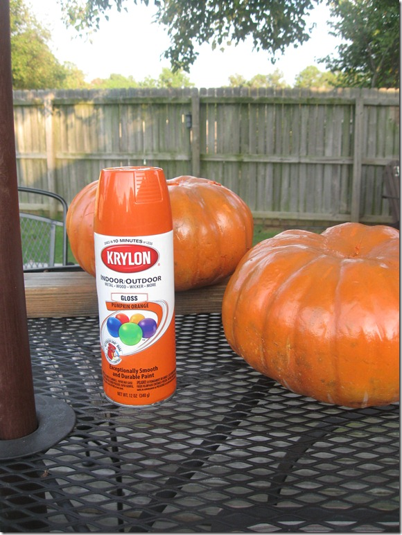 Pumpkin Orange Paint gracious southern living: pumpkin orange spray paint