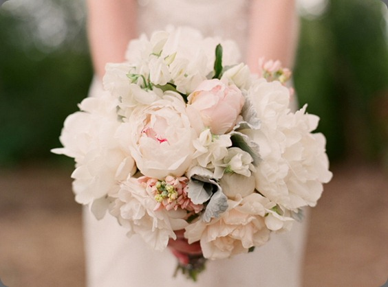 danielle_fletcher_024 fleurs de fallon