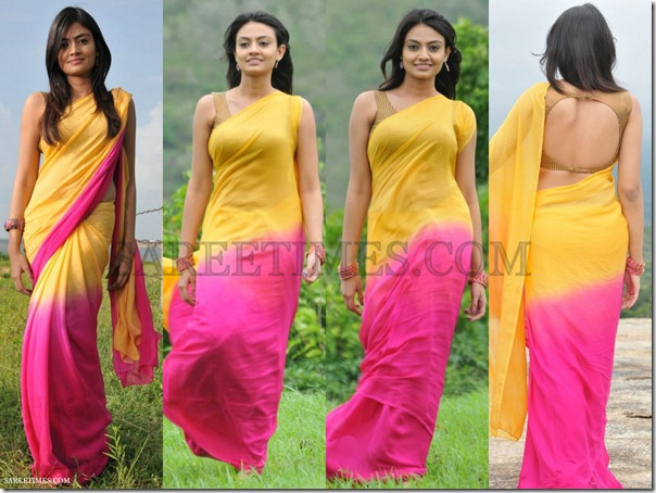 Nikitha_Narayan_Dual_Color_Saree