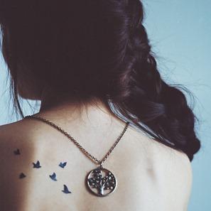 beautiful-bird-birds-cute-fashion-Favim.com-129576_large