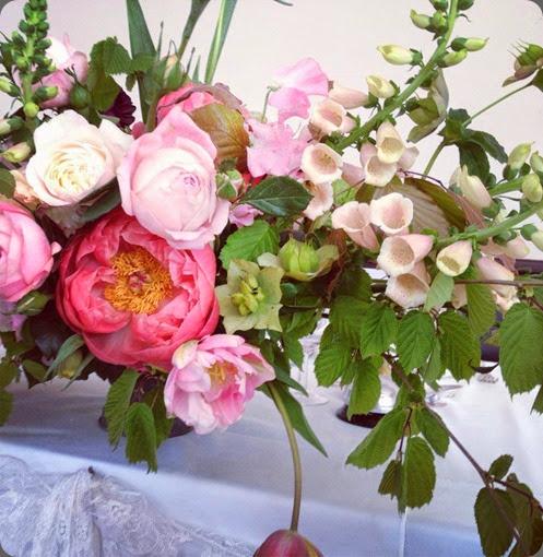 foxgloves 10314513_730919093624952_6829312194385026477_n   laura hingston flowers