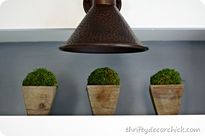 DIY moss topairies