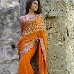 Nayanthara-Hot-Photos-71.jpg