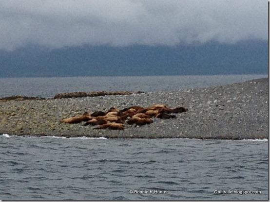 Alaska_Cruise2013 163