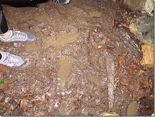 muddystart_area