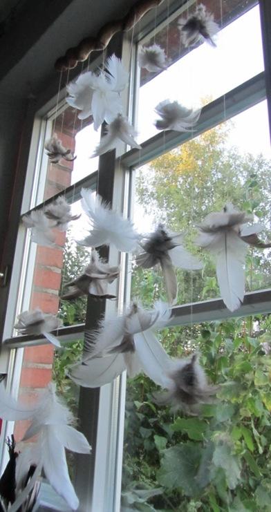Federn im Fenster