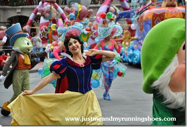 Festival of Fantasy Parade (12)