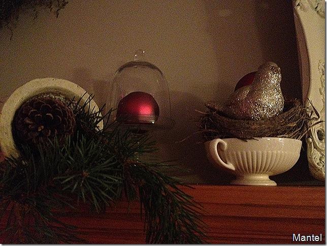 Christmas start 075