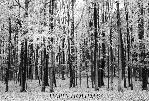 Holiday Card 2012 - 2 copy 2