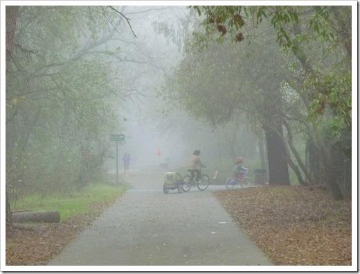 121211_fog_16