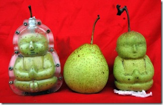 Buddha Shaped Pears (3)