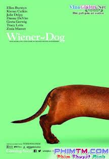 Chú Chó May Mắn - Wiener-Dog Tập HD 1080p Full