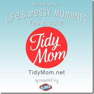 Lifes-messy-momments-with-TidyMom