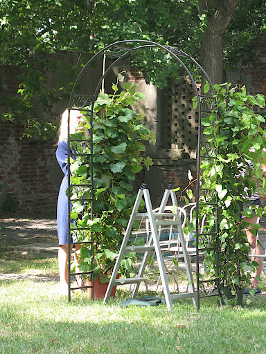 On our last day of shooting, Naomi created a beautiful ceremony structure by adding foliage to an iron archway.