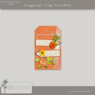 sas_luggagetag_free_pre