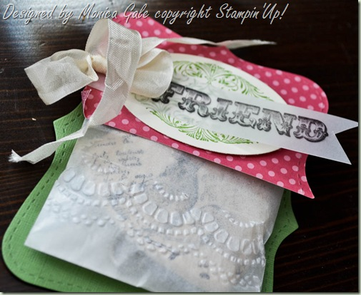 Stampin'Up! Amazing Family pillow gifts packagining