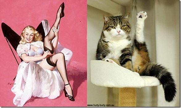 cats-pinup-models-1