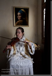 Blog2014__20121028_vermeer-LittleGirlPlayingViolin
