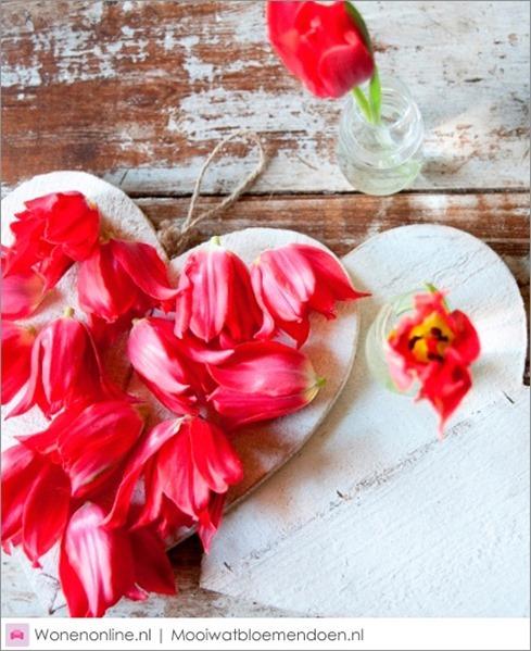 valentijnsdag-zeg-het-met-tulpen-2