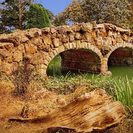 Stone Bridge in Golden Gate Park by Paul Kelley - City,  Street & Park  City Parks ( golden gate park, hdr, stone bridge, san francisco )