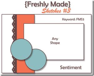 FMS3 Sketch