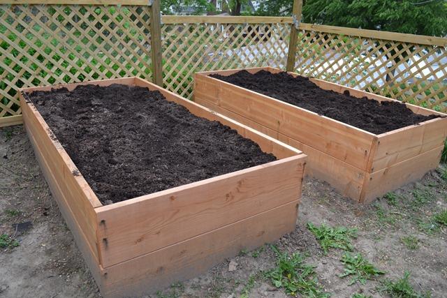 Garden Bed 12