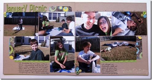 january-picnic