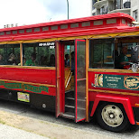 the Vancouver trolley company touring me around town by Matt van Vuuren in Vancouver, British Columbia, Canada