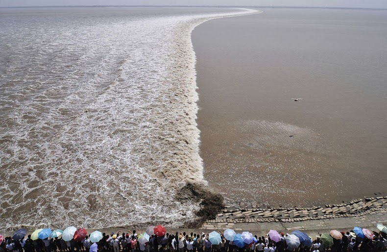 tidal-bore-11