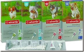 productos repelentes para la Prevención de Leishmaniosis
