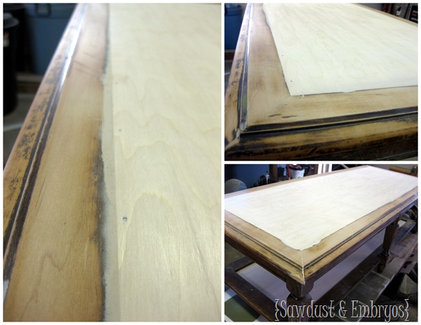Wood Grain Coffee Table ~ Wood-putting {Sawdust and Embryos}