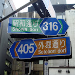 sotobori dori in Tokyo, Tokyo, Japan