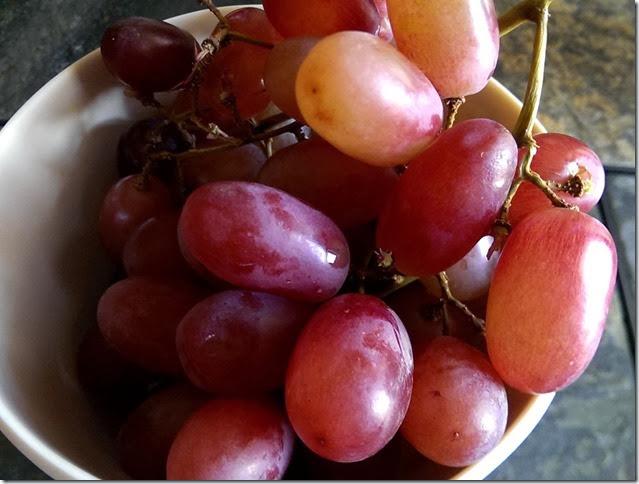 grapes-public-domain-pictures-1 (2269)