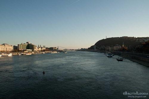 budapest_20111128_donau1