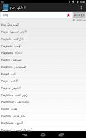 Screenshot of Qamos قاموس انجليزي عربي
