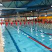 37e Internationaal Zwemtoernooi 2013 (321).JPG
