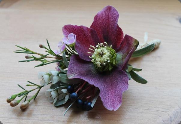 hellebore 223431_293877014074436_607869674_n blue poppy florist